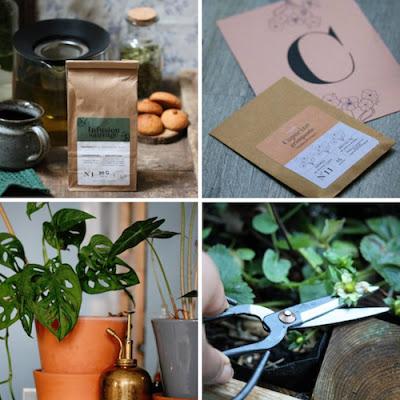 Vente créateurs 7 décembre Paris à l'ouest et la boxe jardinage l'échoppe végétale